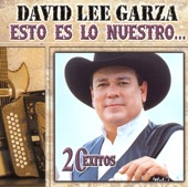 David Lee Garza - Te quiero, te amo