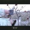 花火 - EP ジャケット写真