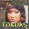 Toadas - Vol 1