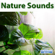 Rain Sounds - Sounds of Nature