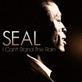 I Can't Stand the Rain - Single