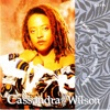 DANCE TO THE DRUMS AGAIN, Cassandra Wilson