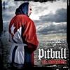 El Mariel, Pitbull