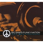 Big Sam's Funky Nation - Up In Here