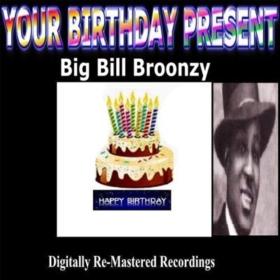 Your Birthday Present - Big Bill Broonzy - Big Bill Broonzy