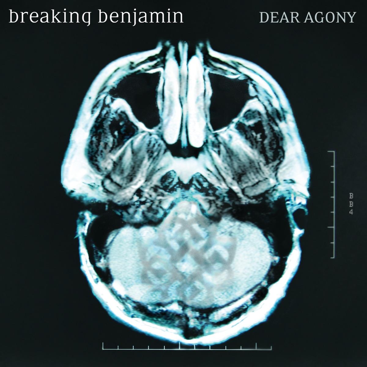 Dear Agony Album Cover by Breaking Benjamin