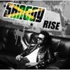 Rise, Shaggy