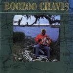 Boozoo Chavis - Keep Your Dress Tail Down (LP Version)
