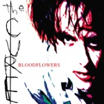 THE CURE - Bloodflowers (LP Version)
