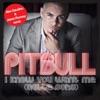 I Know You Want Me (Calle Ocho) [Alex Gaudino & Jason Rooney Remix] - Single, Pitbull