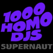 1000 Homo DJs - Better Ways