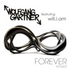 Forever Remixes feat Will i am EP