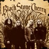 Black Stone Cherry (Bonus Track Version), Black Stone Cherry