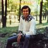 Nashville, Ray Stevens