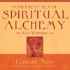 Fundamentals of Spiritual Alchemy (Unabridged) AudioBook Download