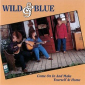 Wild And Blue - You Were Only Foolin