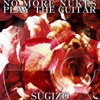 NO MORE NUKES PLAY THE GUITAR - Single ジャケット写真