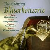 Konzert für Oboe d'amore, Streicher und Basso continuo A-Dur, BWV 1055: I. Allegro English Chamber Orchestra, Thomas Indermühle & Simon Preston