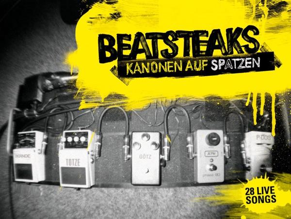 Beatsteaks mit Hello Joe (Live At Soundpark Ost, Würzburg)