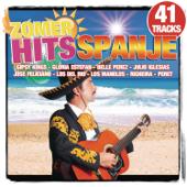 Zomer Hits - Spanje