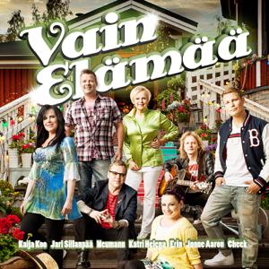 Various Artists - Vain Elämää