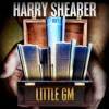 Little GM - Single