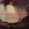 Johann Wolfgang von Goethe - The Sorrows of Young Werther (Unabridged) bild