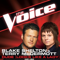 View album Blake Shelton & Terry McDermott - Dude (Looks Like a Lady) [The Voice Performance] - Single