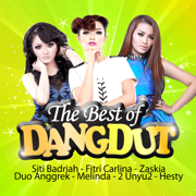 The Best of DANGDUT - Various Artists - Various Artists