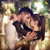 Tere Bin (feat. Pritam) - DJ Raj