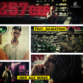 Über alle Berge (feat. Alligatoah)
