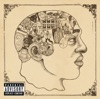 Phrenology, The Roots