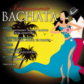 Íntimamente Bachata
