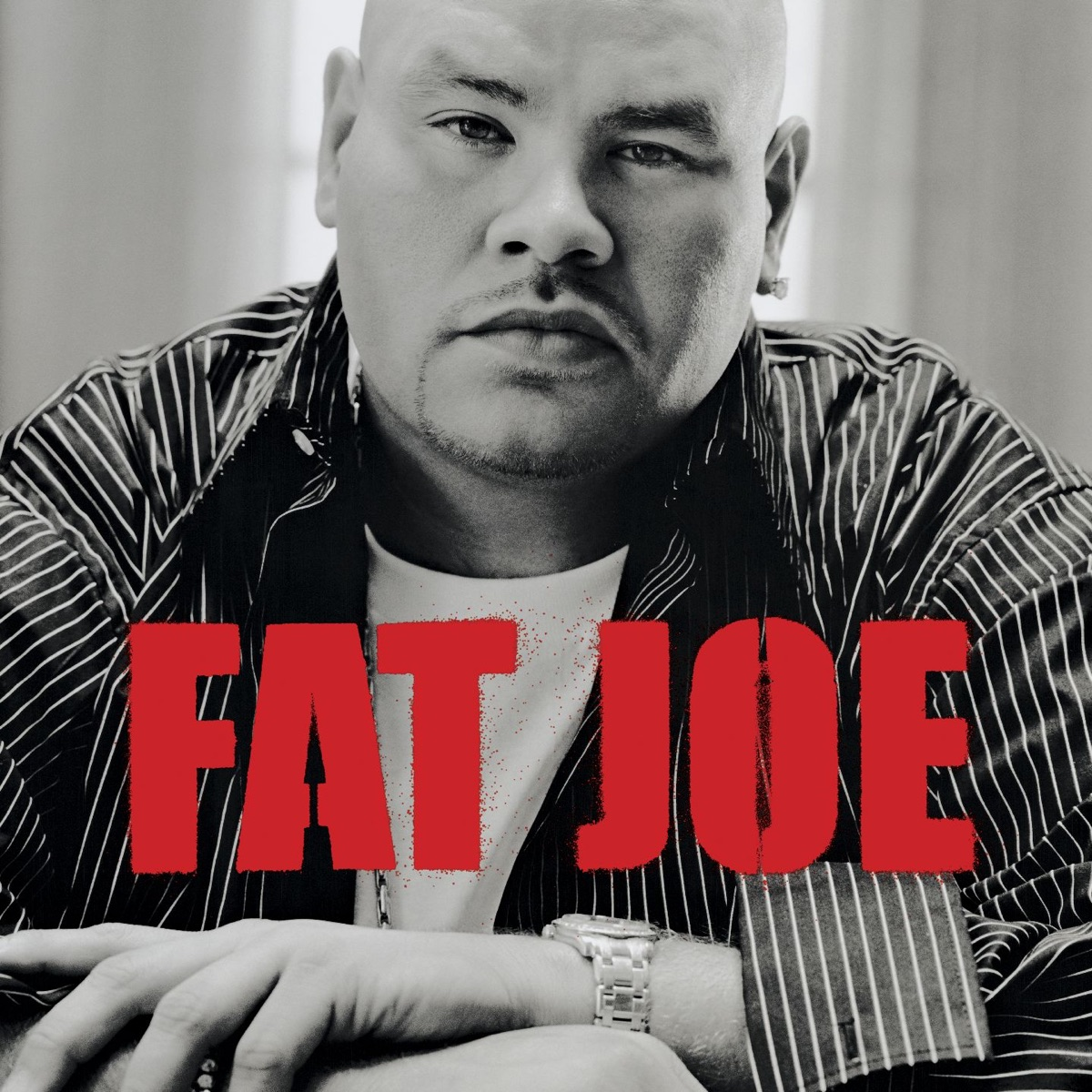 All Or Nothing Fat Joe CD cover