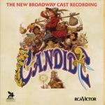 Jason Danieley - Candide's Lament