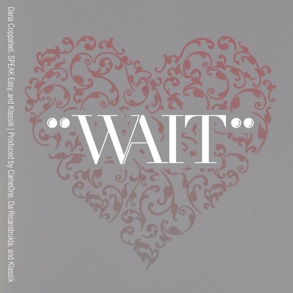Wait (feat. Klassik) - Single