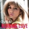 Burning Love - Single ジャケット写真