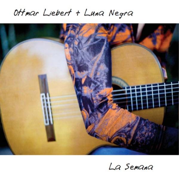 Ottmar Liebert - Spanish Sun