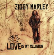 Beach In Hawaii - Ziggy Marley - Ziggy Marley