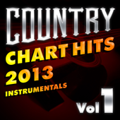 Karaoke: Country Chart Hits 2013, Vol. 1