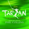 Tarzan The Broadway Musical Sountrack from the Musical Cast Recording