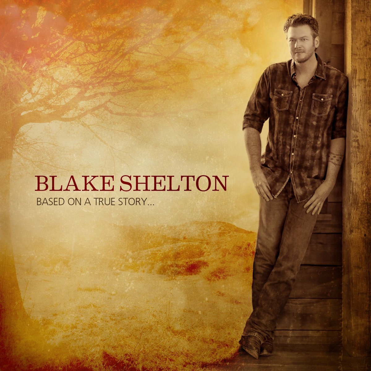 Based On a True Story Deluxe Version Blake Shelton CD cover