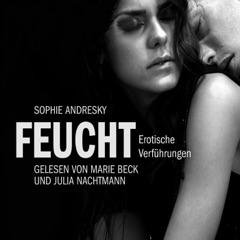 Feucht: Erotische Verführungen (Erotik Hörbuch Edition)