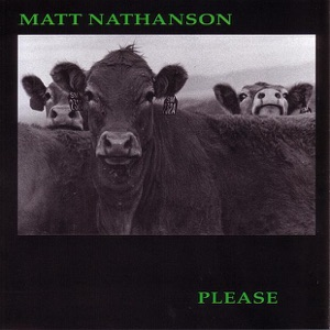 Matt Nathanson - Lost Myself In Search Of You