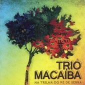 Trio Macaíba - Xote junto