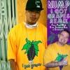 I Got Grapes (feat. Paul Wall, E-40, Skinhead Rob & Stresmatic) [Remix] - Single, Nump