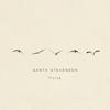 Garth Stevenson - Flying  artwork