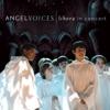 Angel Voices: Libera In Concert ジャケット写真