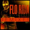 Wild Ones (feat. Sia) [Remixes] Pt. 2 - EP, Flo Rida