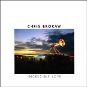 Chris Brokaw - Whose Blood